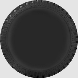 1986 Pontiac Grand Am Tire Side