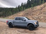 FordF150AbyssGray's 2019 Ford F150 Lariat 4wd