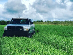 Ruth's 2000 Dodge Ram 2500 QuadCab 4wd
