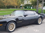 TommyHollywood's 1980 Pontiac Firebird Base Model