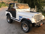 rattler's 1982 Jeep CJ-5 Limited